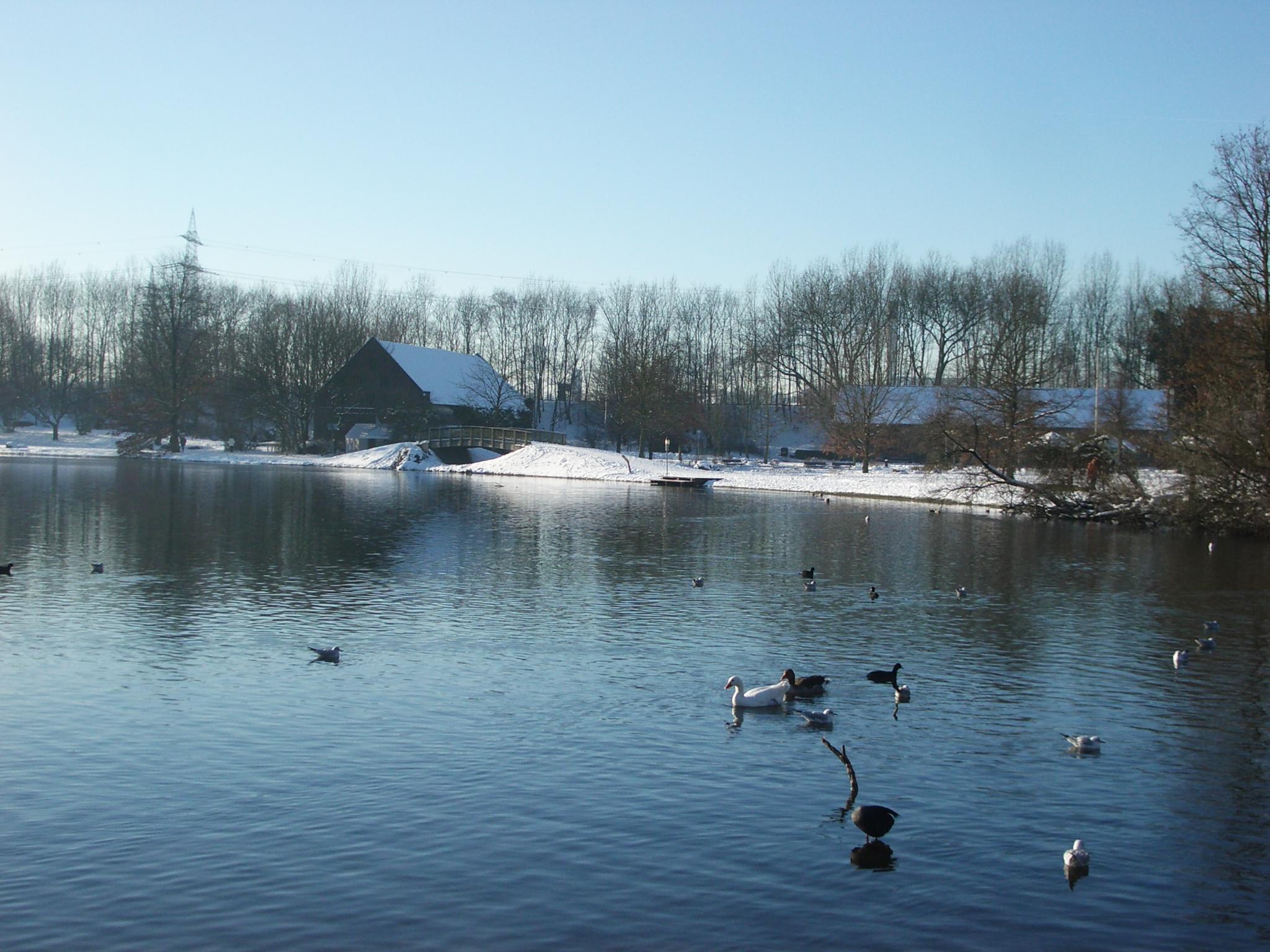 Ümminger See im Winter